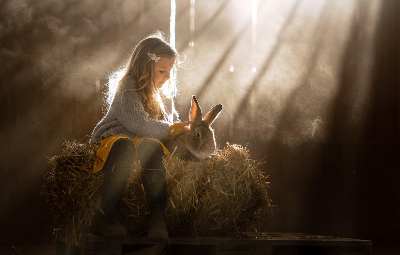 Photo wallpaper rays, rabbit, hay, girl, friends