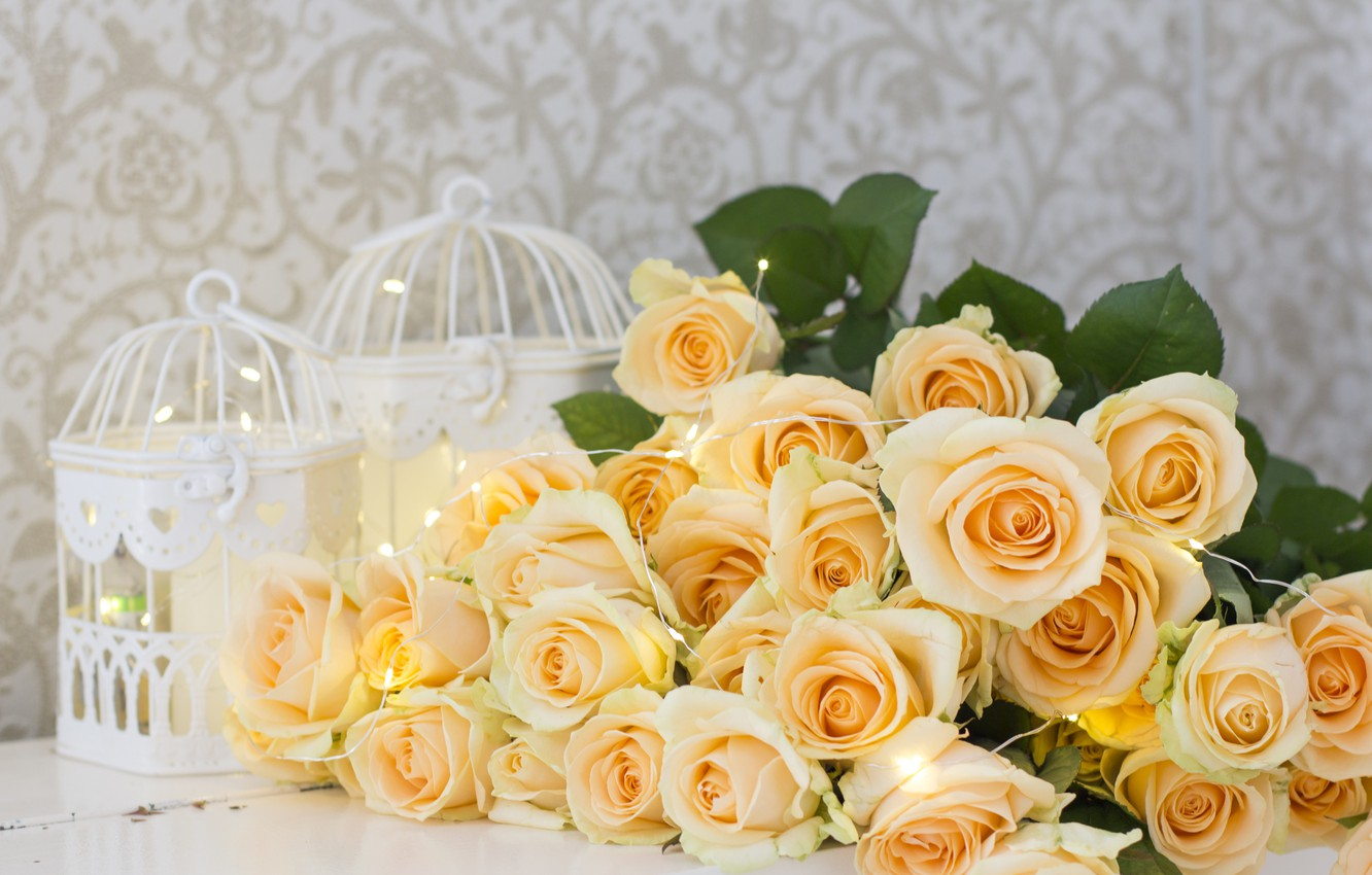 Photo wallpaper flowers, roses, yellow, yellow, flowers, roses