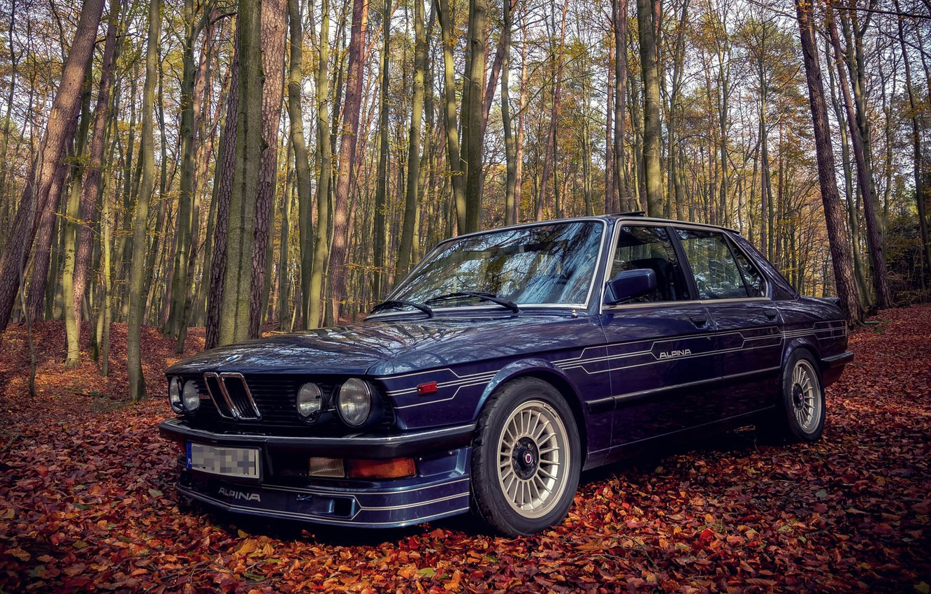 Photo wallpaper BMW, E28, ALPINA, 1985, B9/3.5