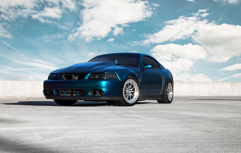 Photo wallpaper Mustang, Ford, Shelby, Cobra, Terminator, 2003, Chrome, Mystic, CCW