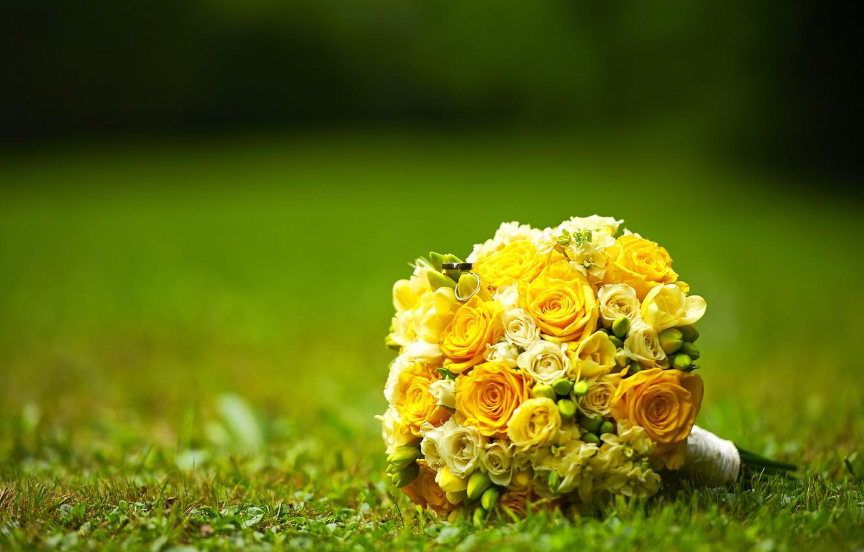 Photo wallpaper roses, bouquet, ring, bokeh