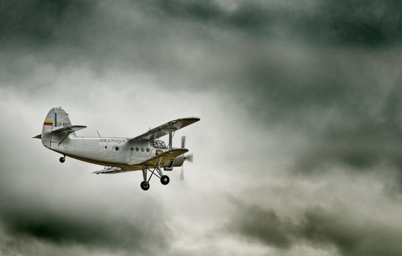 Photo wallpaper the sky, the plane, maize, legend, Antonov, biplane, An-2