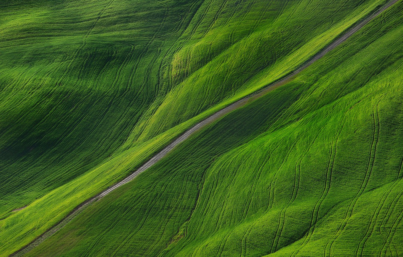 Photo wallpaper road, nature, field, Spring