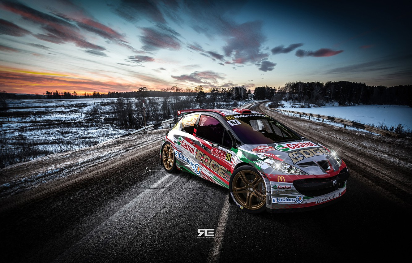 Photo wallpaper Auto, Road, Sport, Machine, Peugeot, WRC, Rally, Rally, Rendering, Concept Art, Peugeot 207, Transport & …