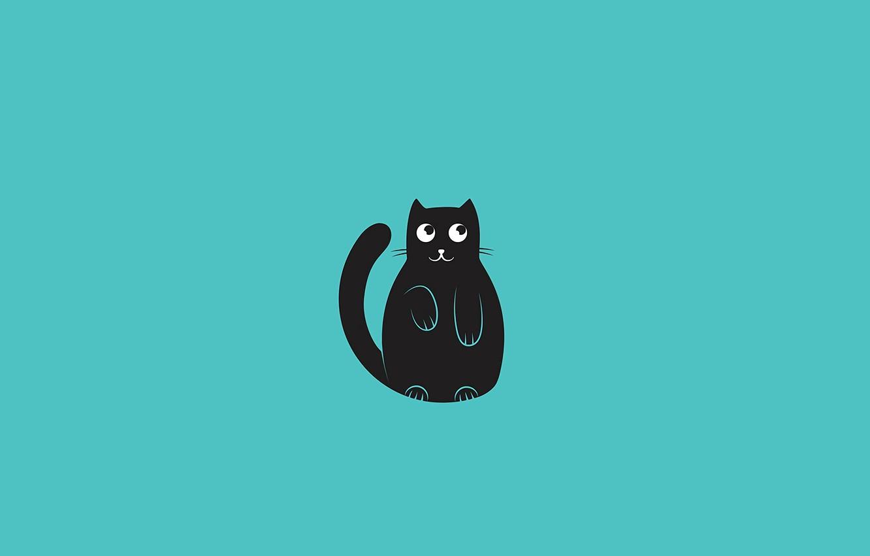 Wallpaper Cat Background Blue Wallpaper Minimalism Vector