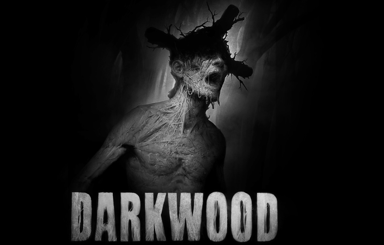 Photo wallpaper The game, Art, Cover, Darkwood