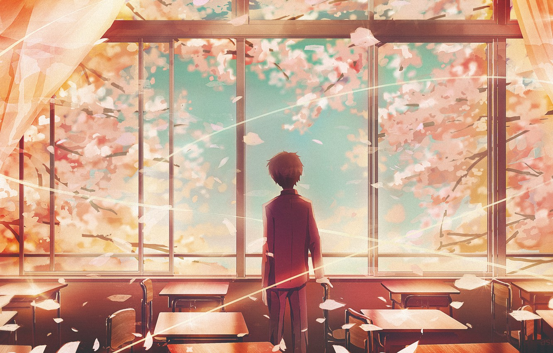 Photo wallpaper spring, boy, window, class, cherry, student