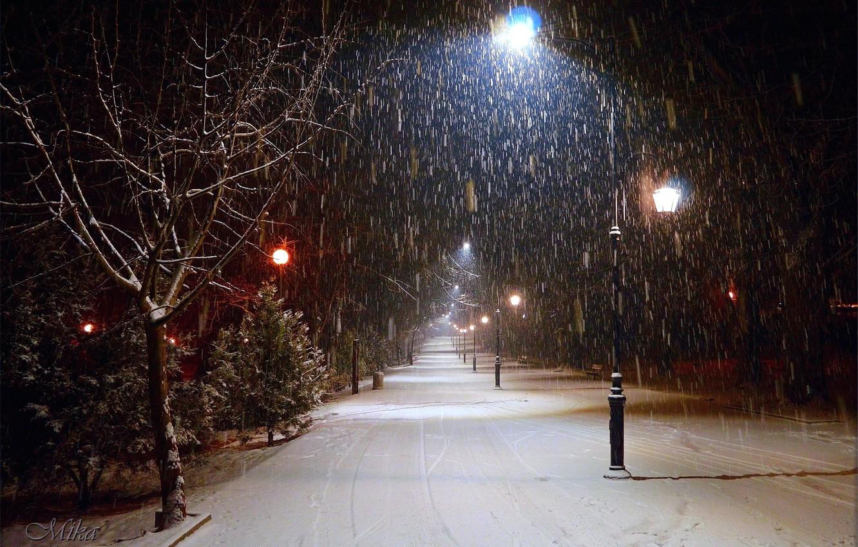 Photo wallpaper Winter, Night, Snow, Lights, Frost, Winter, Frost, Night, Snow