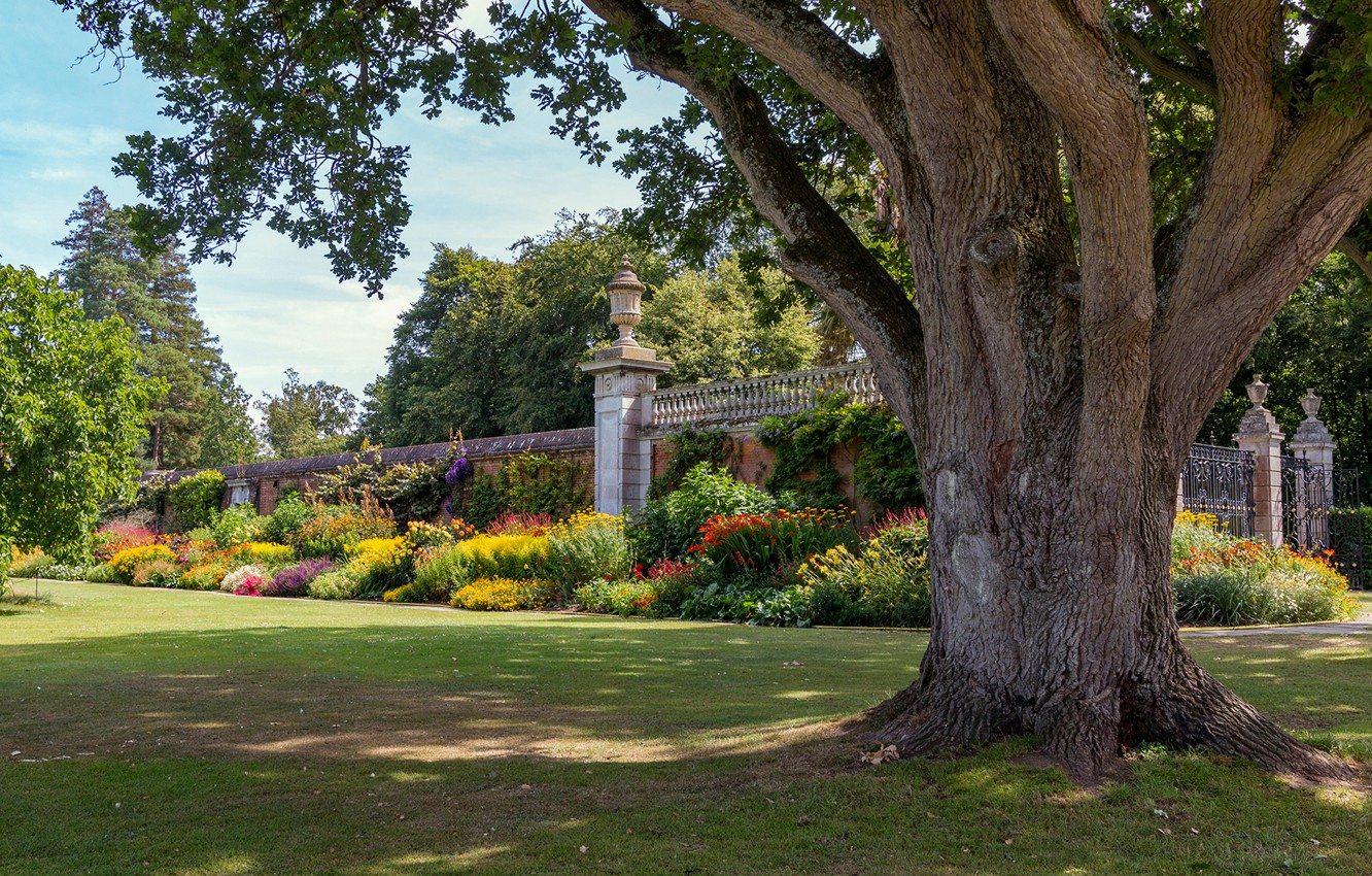 Wallpaper Greens The Sun Trees Flowers Park Lawn The Fence England Cliveden Garden Images For Desktop Section Priroda Download