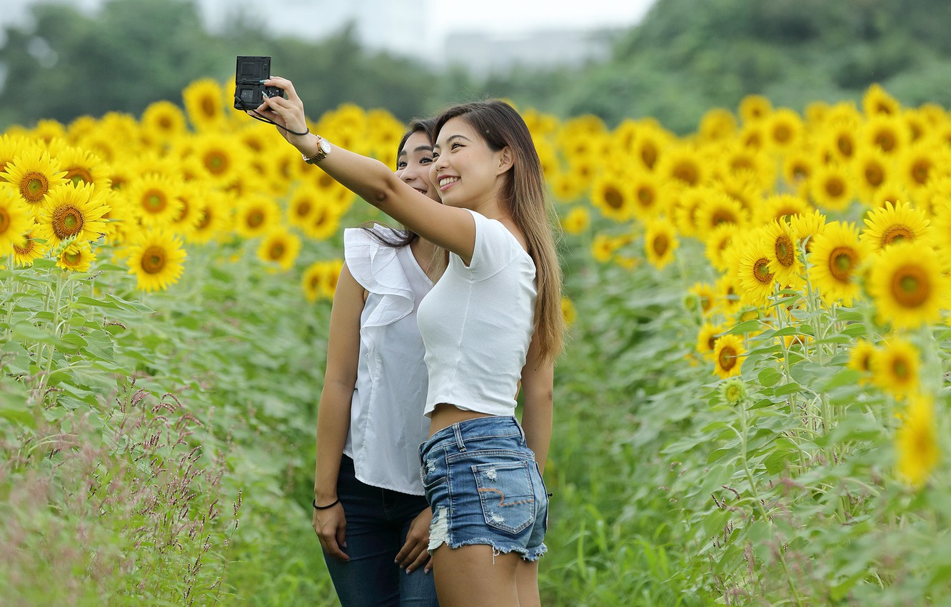 Wallpaper field joy sunflowers nature girls the camera smile
