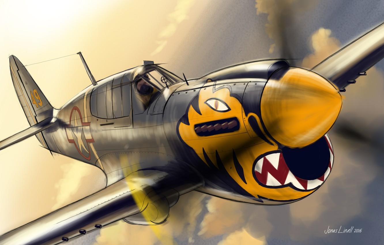Photo wallpaper flight, tiger, figure, fighter, screw, pilot, Curtiss, P-40, Warhawk, nose art