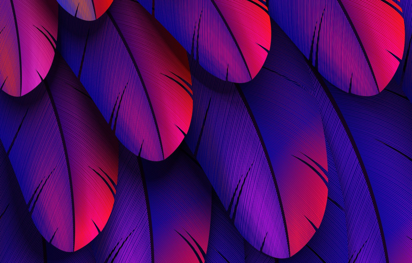 Photo wallpaper colorful, feather, abstract 3D
