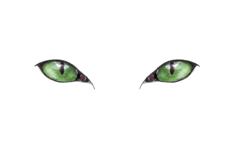 Photo wallpaper green eyes, minimalism, eyes, Cat, artwork, drawing, white background, simple background, pencil drawing