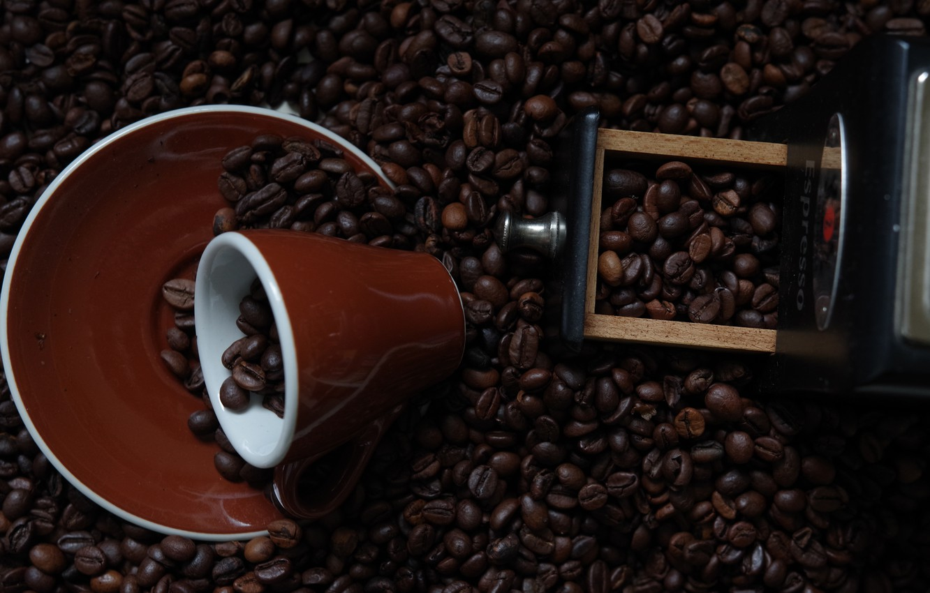 Photo wallpaper coffee, mug, coffee beans, saucer, coffee grinder