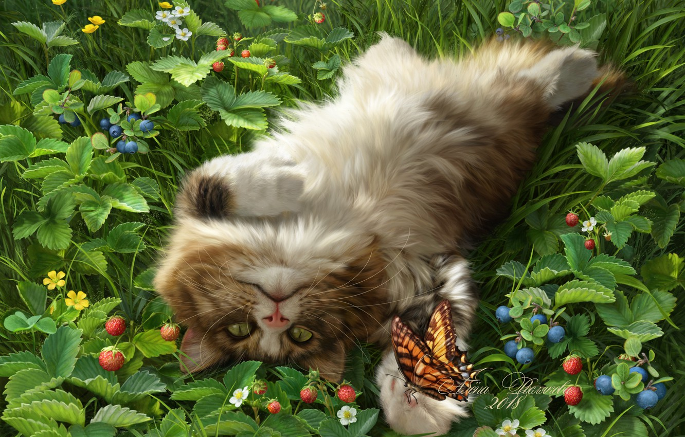 Photo wallpaper cat, berries, butterfly, blueberries, strawberries, fluffy, cat