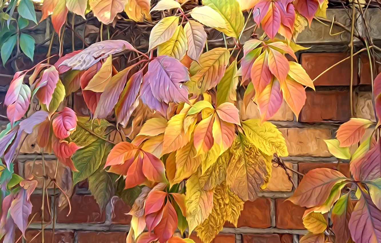 Photo wallpaper nature, rendering, the colors of autumn, brick wall, autumn leaves, wild grapes