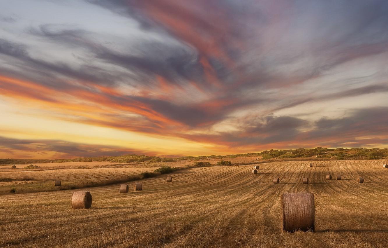 Photo wallpaper field, summer, sunset, hay