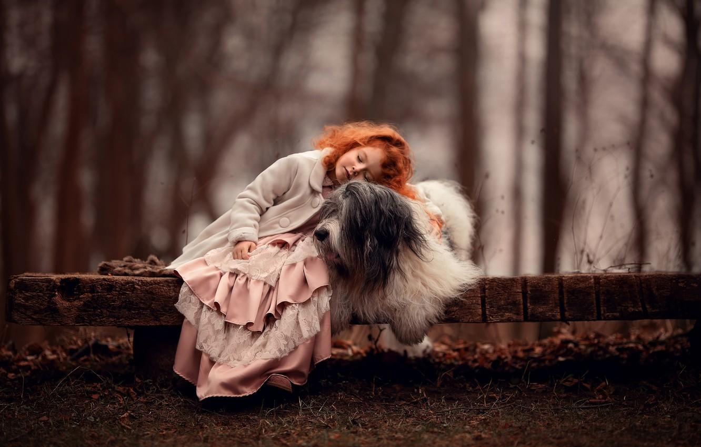 Photo wallpaper mood, dog, friendship, girl, red, friends, redhead