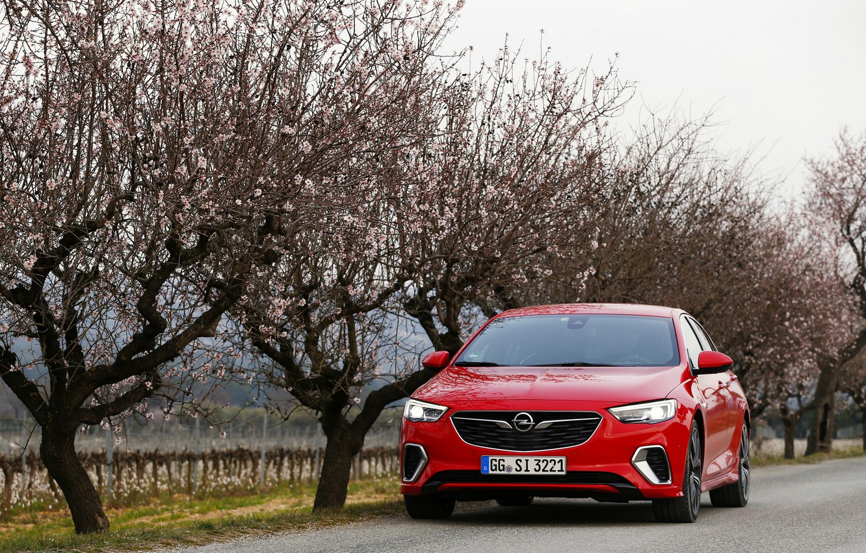 Photo wallpaper trees, red, Insignia, Opel, Insignia GSi
