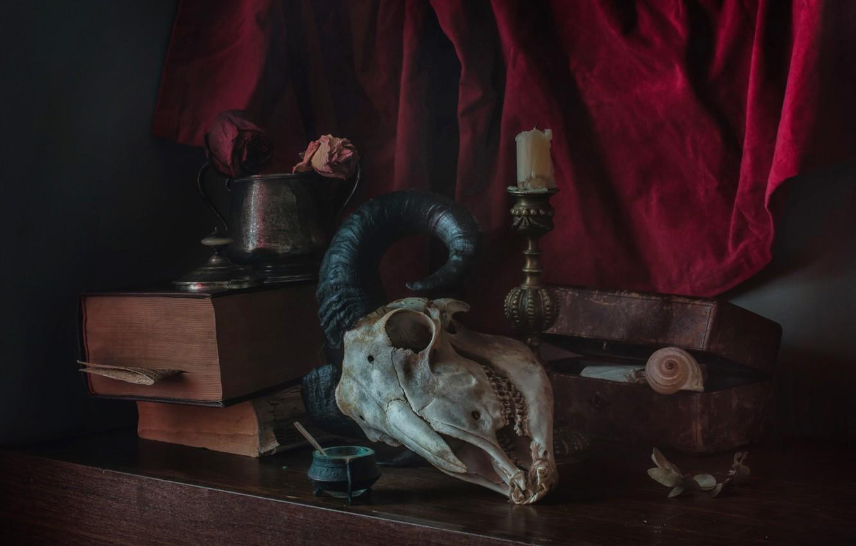 Photo wallpaper books, skull, horns, still life, blind