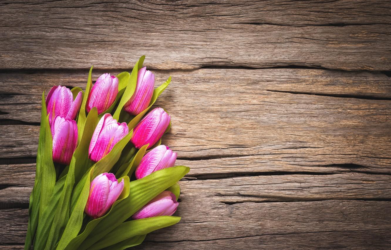 Photo wallpaper flowers, tulips, pink, wood, pink, flowers, beautiful, tulips, spring