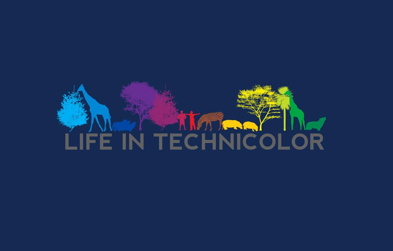 Photo wallpaper the film, silhouette, life in technicolor, life in colors