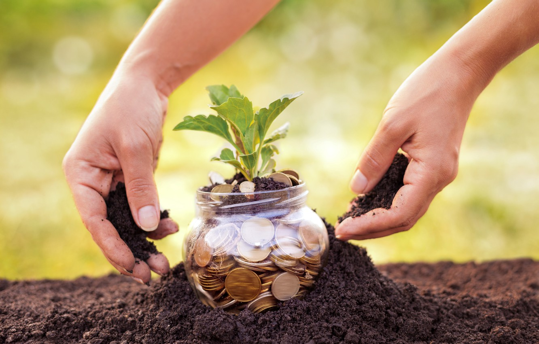 Wallpaper Future Land Money Plant Savings Images For Desktop Section Raznoe Download