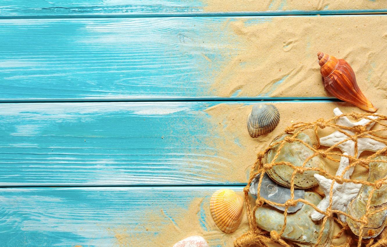 Photo wallpaper sand, beach, shell, beach, wood, sand, marine, still life, seashells