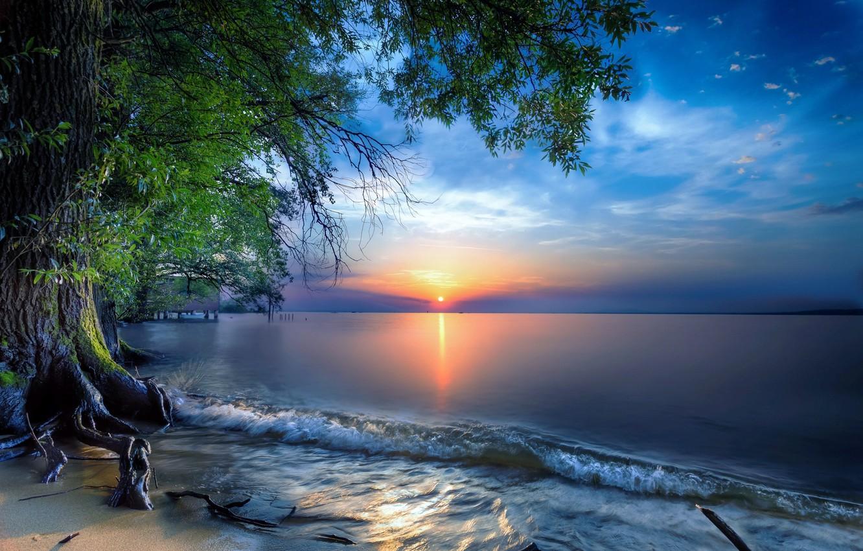 Photo wallpaper landscape, sunset, nature, lake, tree, Austria, Lake Constance