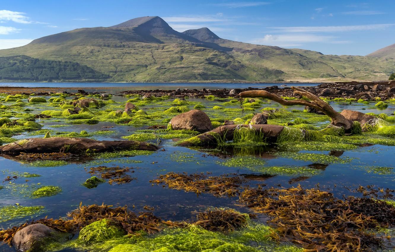 Photo wallpaper Scotland, Isle of Mull coastline, Killunaig