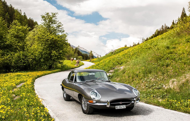Photo wallpaper Jaguar, E-Type, Coupe, Sport