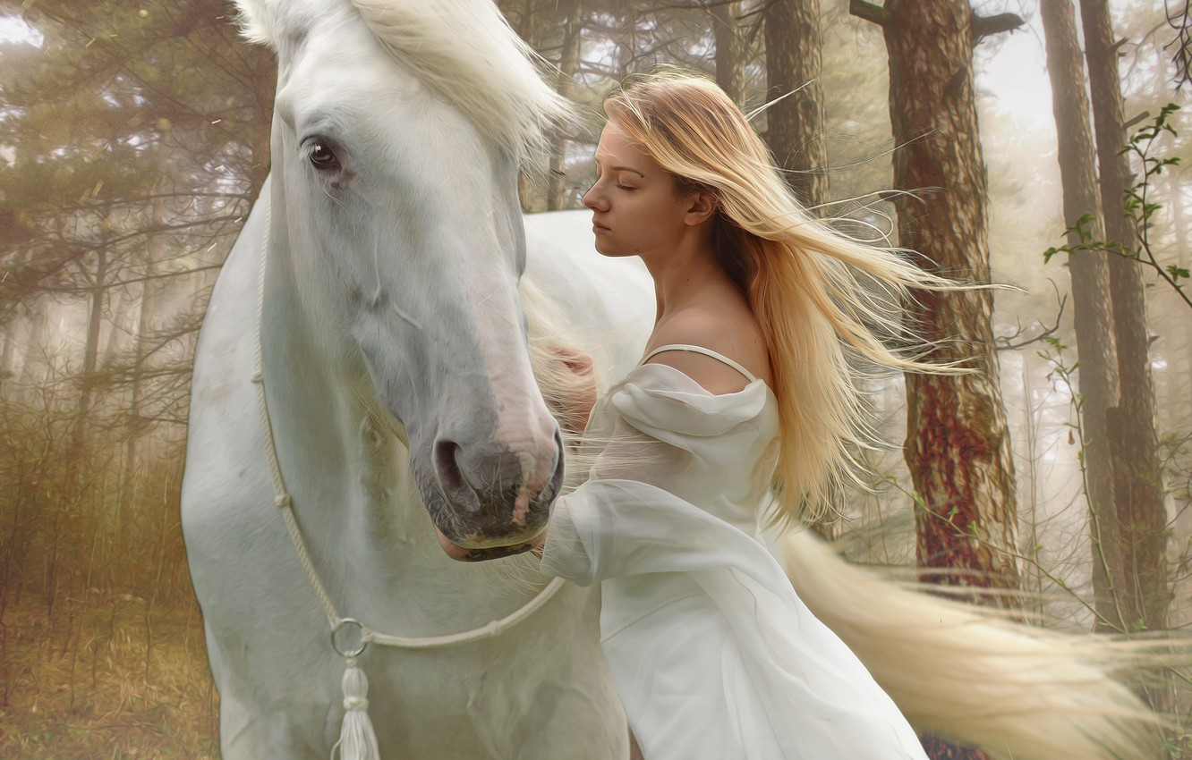 Photo wallpaper forest, white, look, face, girl, trees, freshness, nature, fog, mood, horse, the wind, romance, horse, …