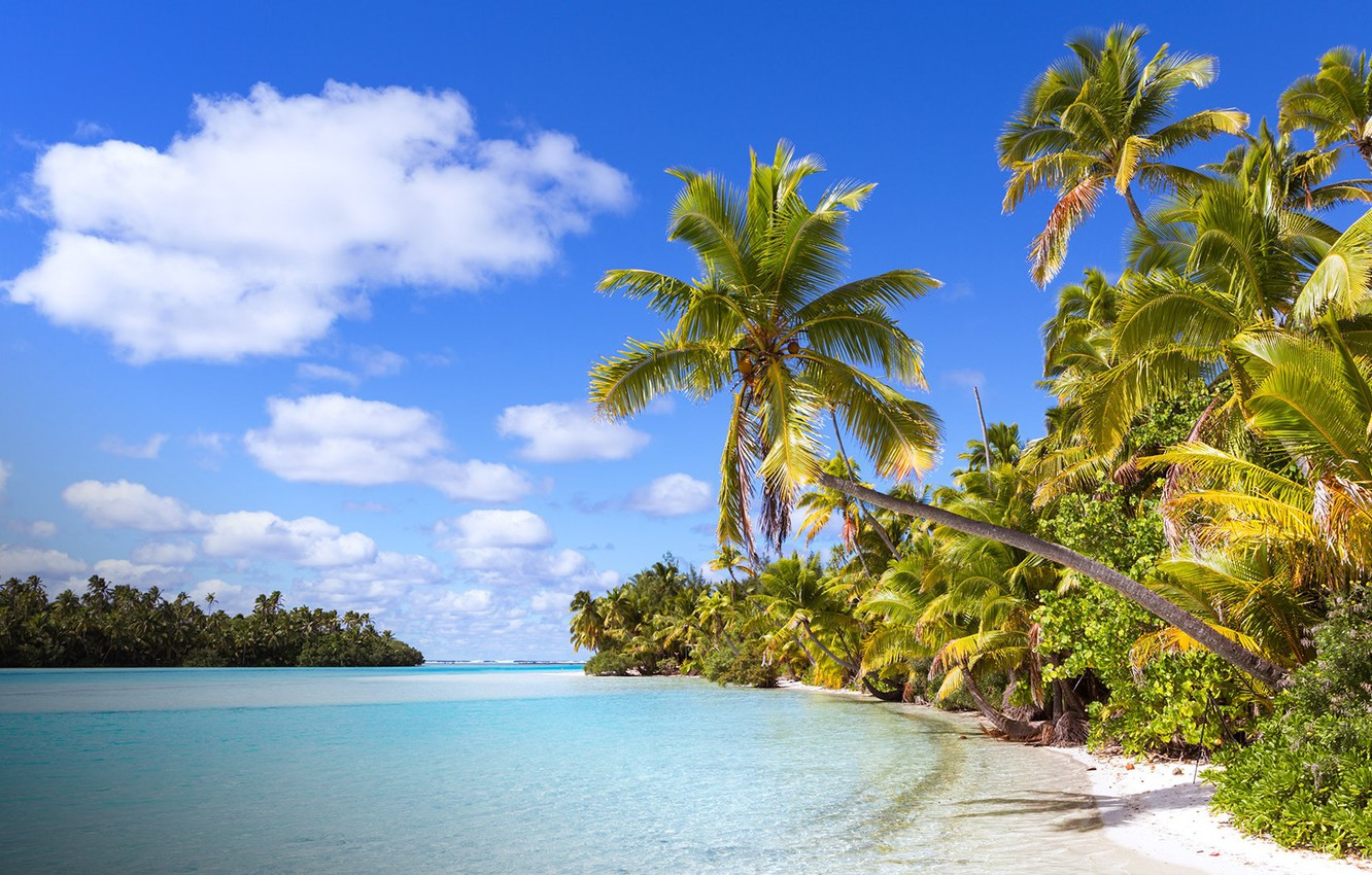 Photo wallpaper beach, tropics, palm trees, the ocean, Laguna, Cook Islands, One Foot Island (Tapuaetai), Aitutaki