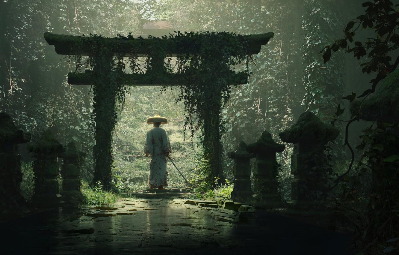 Photo wallpaper thickets, katana, hat, samurai, lights, samurai, ivy, a stone path, from the back, torii gate, …