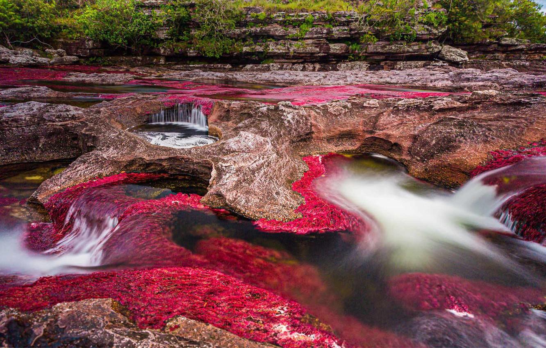 Photo wallpaper landscape, Colombia, Национальный парк Макарена