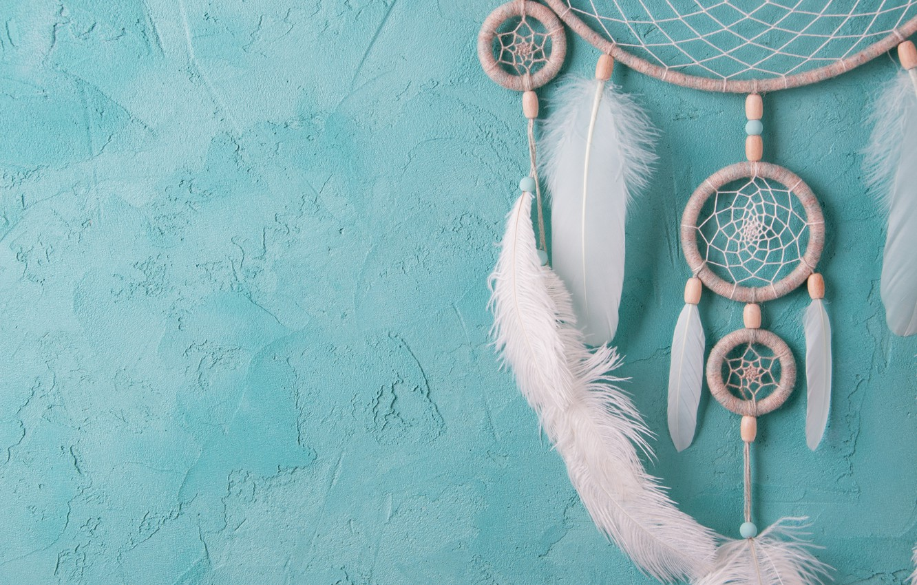 Photo wallpaper wall, feathers, catches dreams