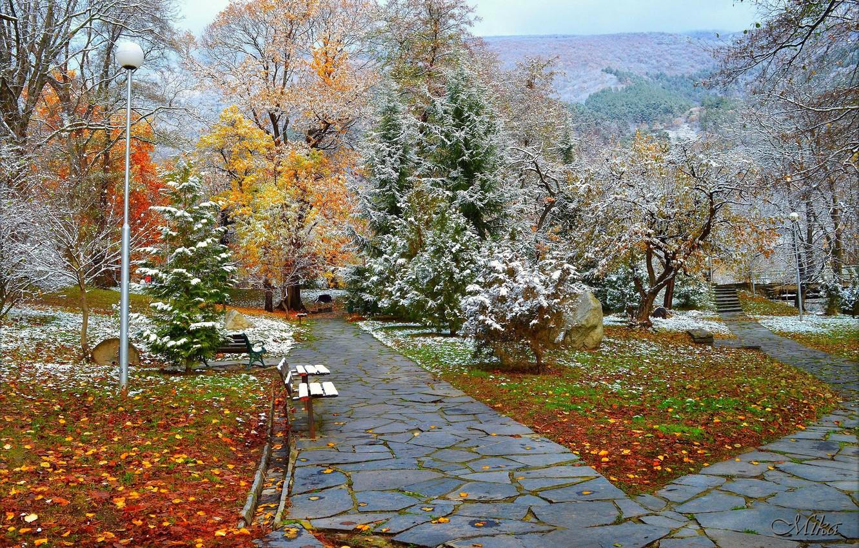 Photo wallpaper Winter, Snow, Park, Winter, Park, Snow, Trees, Benches