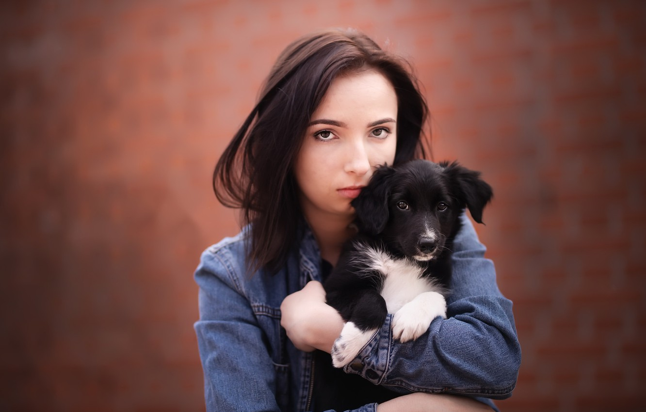 Photo wallpaper girl, dog, puppy