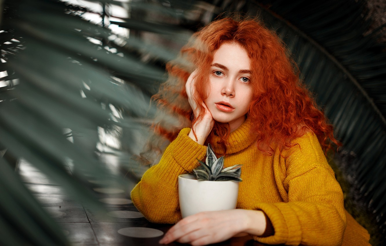 Photo wallpaper flower, look, girl, pose, model, portrait, plants, makeup, hairstyle, pot, sitting, redhead, in yellow, sweater, …
