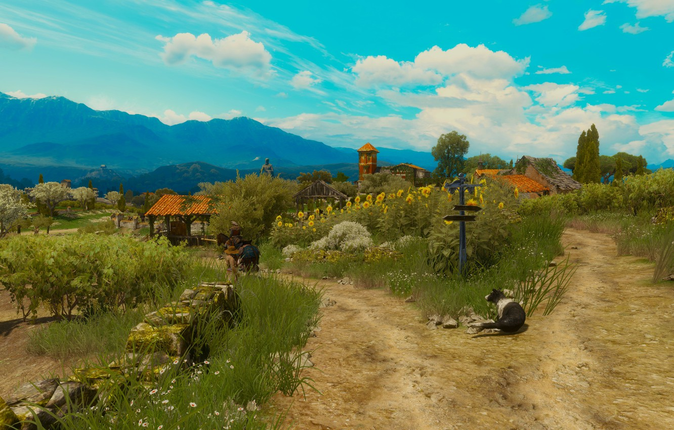 Photo wallpaper beauty, the Witcher, The Witcher 3: Wild Hunt, Toussaint