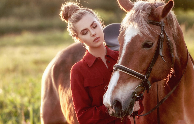 Photo wallpaper girl, horse, horse, horse-face, Ki Te