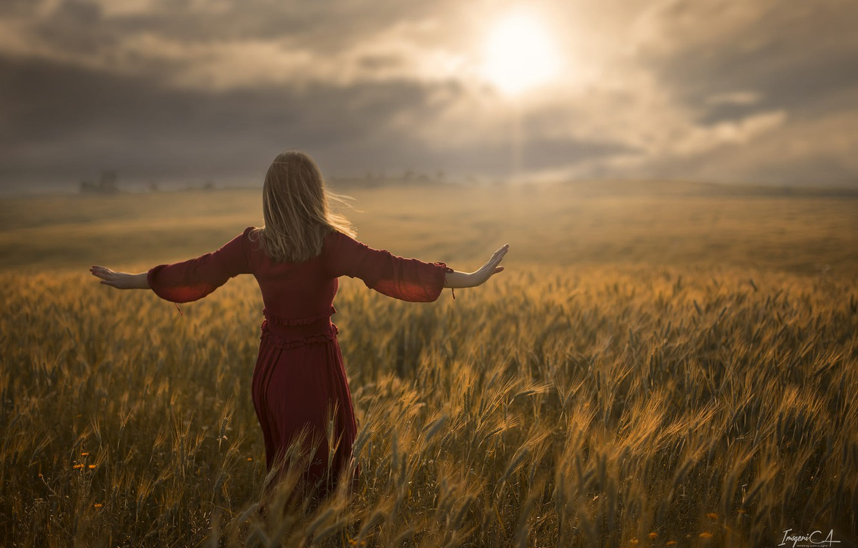 Photo wallpaper wheat, field, girl, the sun, the wind, back, Antonio Conde