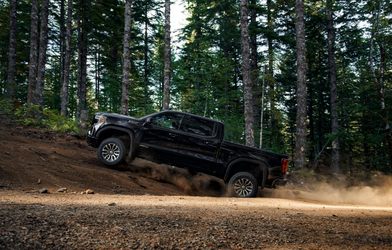 Photo wallpaper forest, black, pickup, GMC, Sierra, AT4, 2019