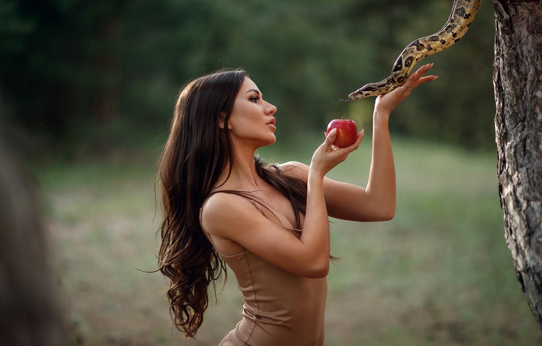 Photo wallpaper girl, pose, background, Apple, snake, hands, long hair, Sergey Sorokin, the serpent