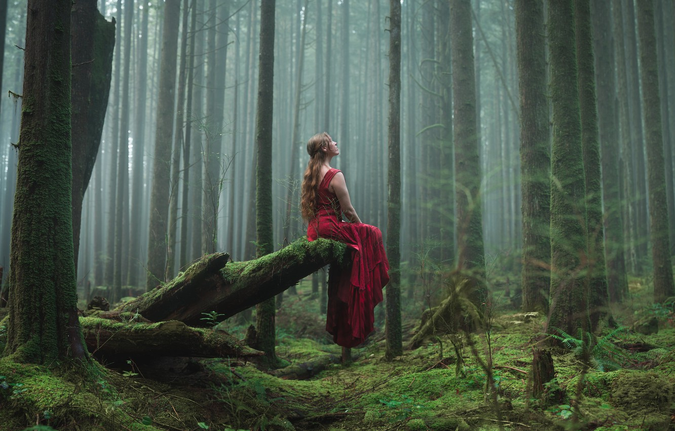 Wallpaper forest, girl, sitting, red dress images for desktop ...