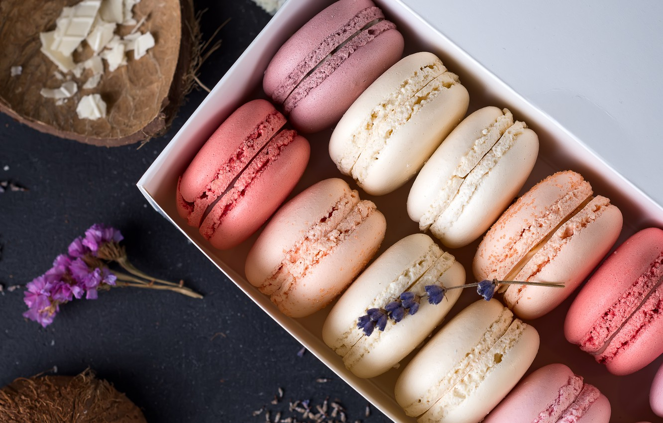 Photo wallpaper colorful, french, macaron, macaroon