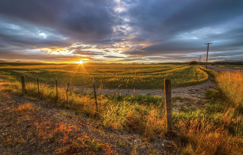 Photo wallpaper field, landscape, sunset, nature, beauty, nature