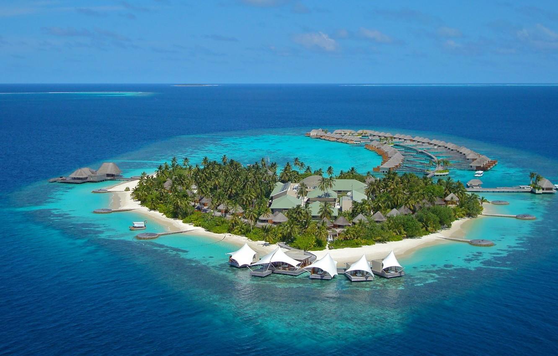 Wallpaper Palm Trees The Ocean Island The Maldives