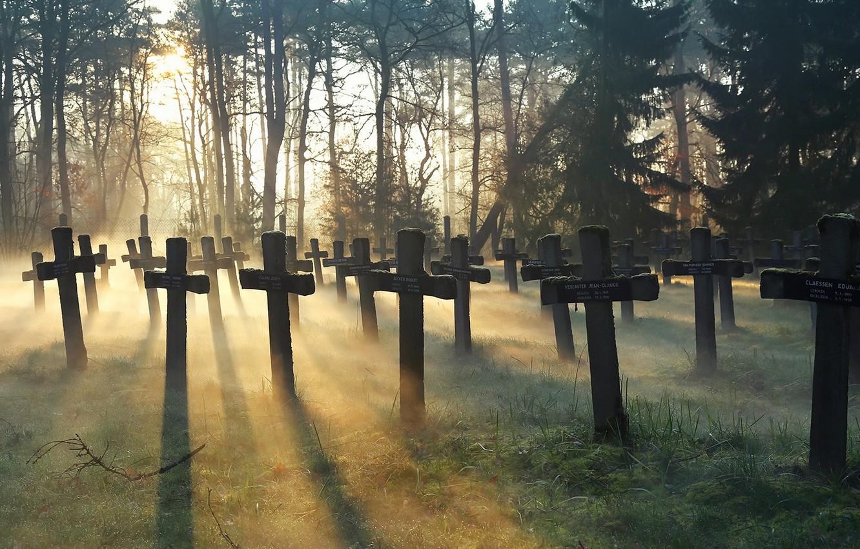 Photo wallpaper crosses, morning, cemetery