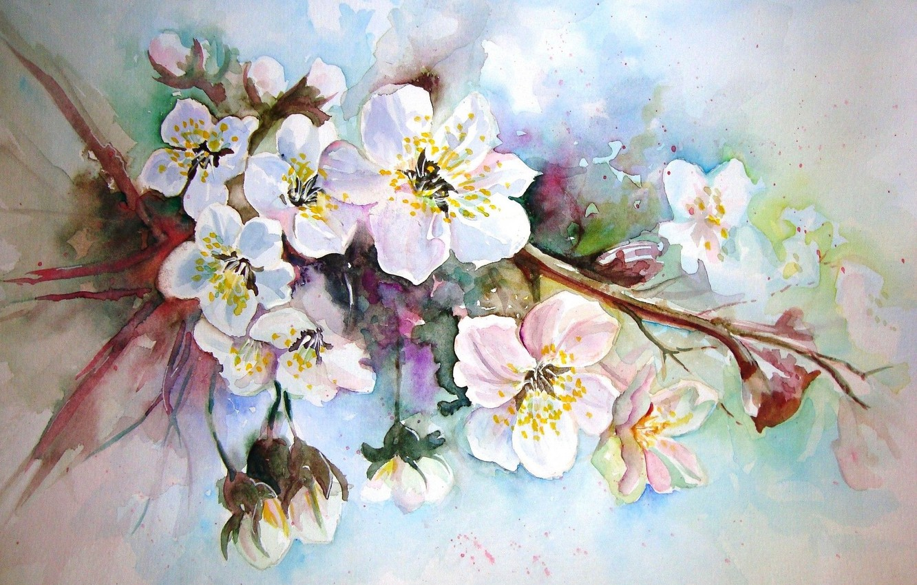 Photo wallpaper figure, picture, watercolor, painting, Apple blossoms, spring flowers, unknown author